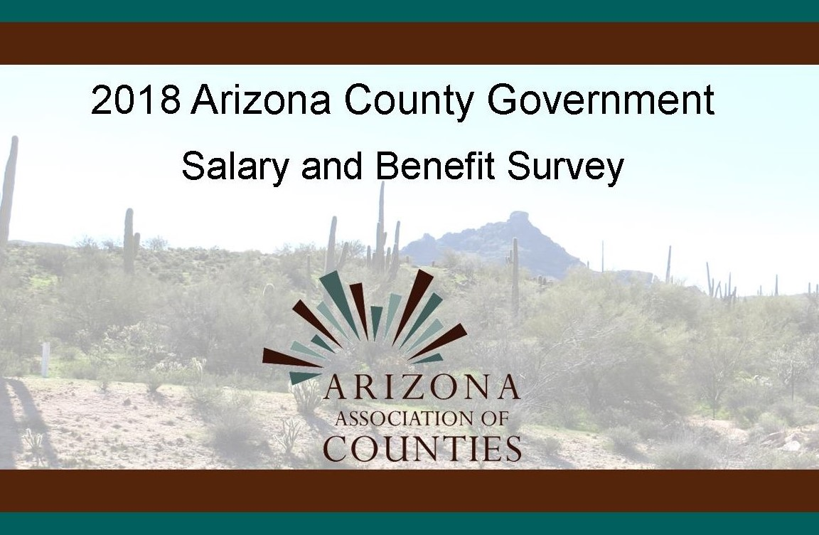 Cover page 2018 SB Survey.jpg